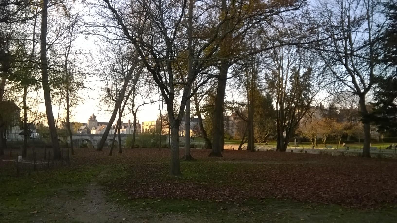 Visite : Les jardins du bord de Sauldre @ Square Ferdinand Buisson